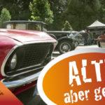 Big Bumper Meet, Vorschau